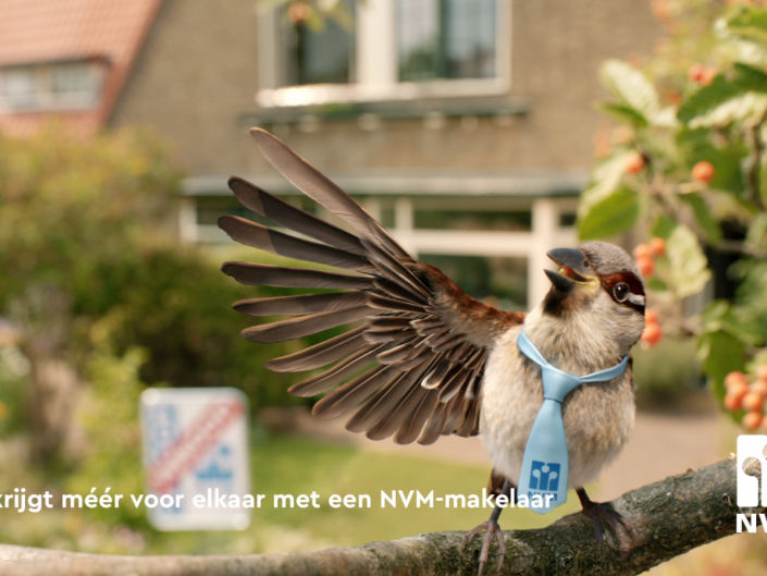 NVM - Jip de Huismus